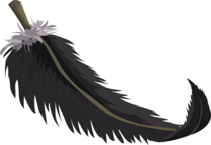 black feather from Spirit